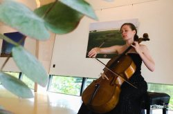 Hanneke Rouw, Cello